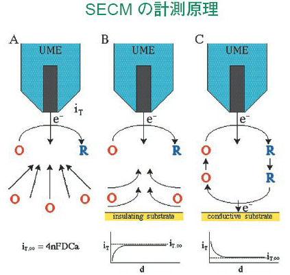 EC detection mechanism