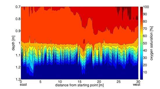 海 河川 貯水池の酸素飽和度 貧酸素プロファイル